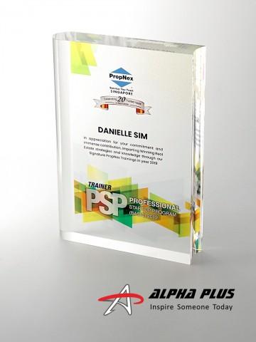 AAP30 Book