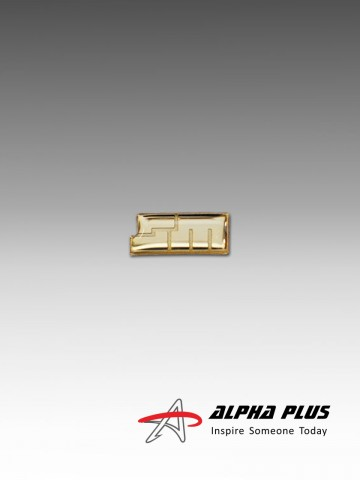 Customised Collar Pin (GOLD PLATED  - EPOXY)