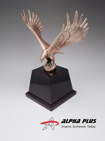AMEX Eagle