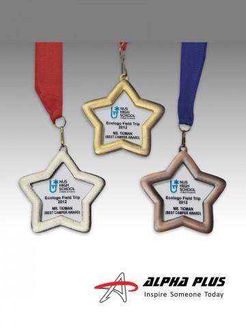 Medal - BM78 Star