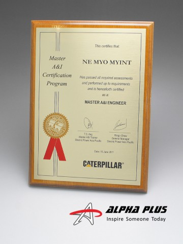 A4 Certificate on Teakwood Plaque