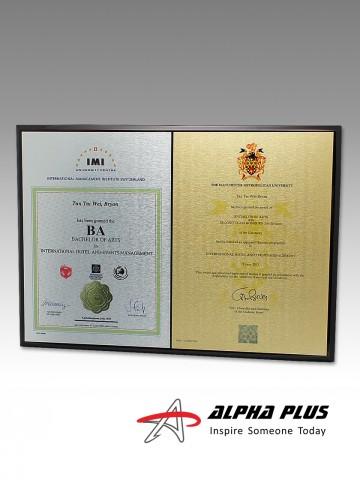 Certificate Plaques - 2 Plates