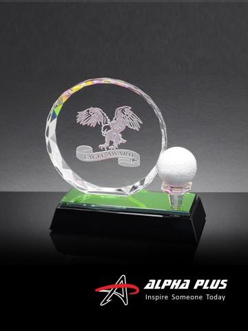 HS665 Eagle Award