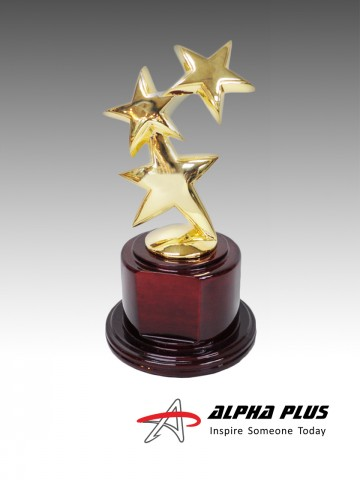 24K Gold Plated Constellation Star